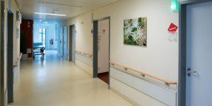 Fotodruck - Asklepios Klinik Altona - Flur Geburtsstation - Blumen