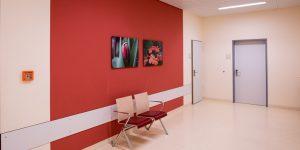 Fotodruck - Asklepios Klinik Altona - Wartebereich Geburtsstation - Blumen