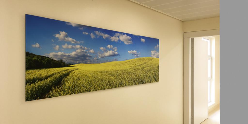 Großer Fotodruck in der Asklepios Klinik Nord