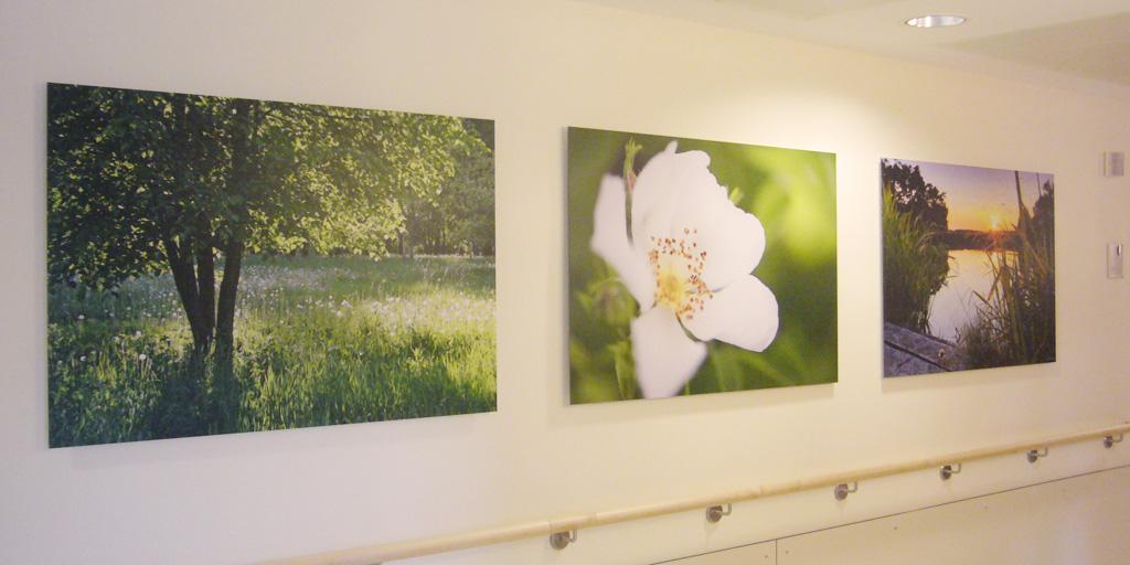 Drei Fotodrucke für Agaplesion Diakonieklinikum Rotenburg