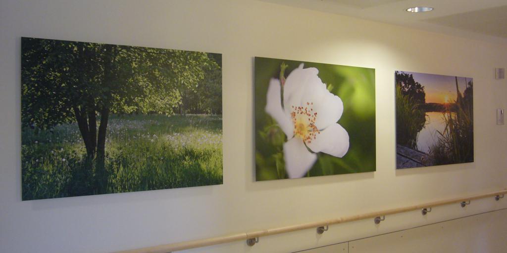 Fotodrucke für Agaplesion Diakonieklinikum Rotenburg
