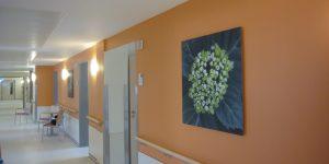 Fotodruck auf oranger Wand