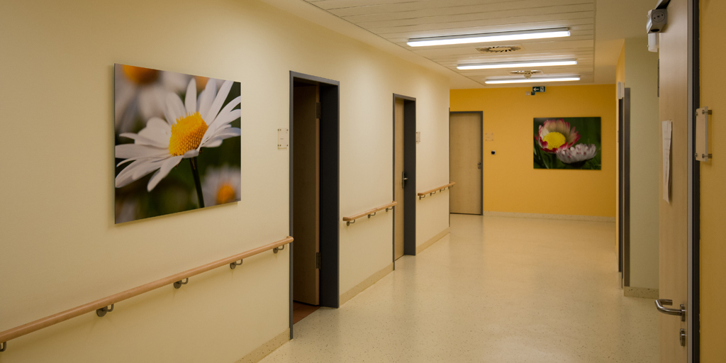Fotodrucke - Asklepios Klinik Altona - Flur - Blumen