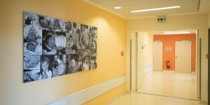 Fotodrucke - Asklepios Klinik Altona - Flur Geburtstation - Babycollage