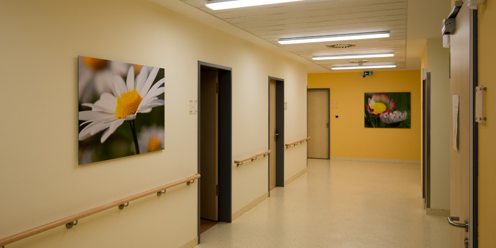 Fotodrucke - Asklepios Klinik Altona - Flur Geburtstation - Margeriten