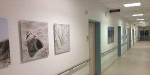 Fotodrucke in einem Krankenhausflur