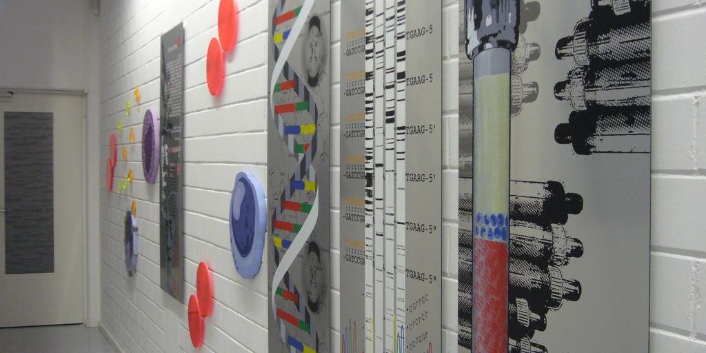 Siebdruck auf Aluplatte - MLL Münchner Leukämielabor - Künstlerin Meike Kohls - Laborflure