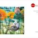 Beitragsbild Titel des neuen Katalogs