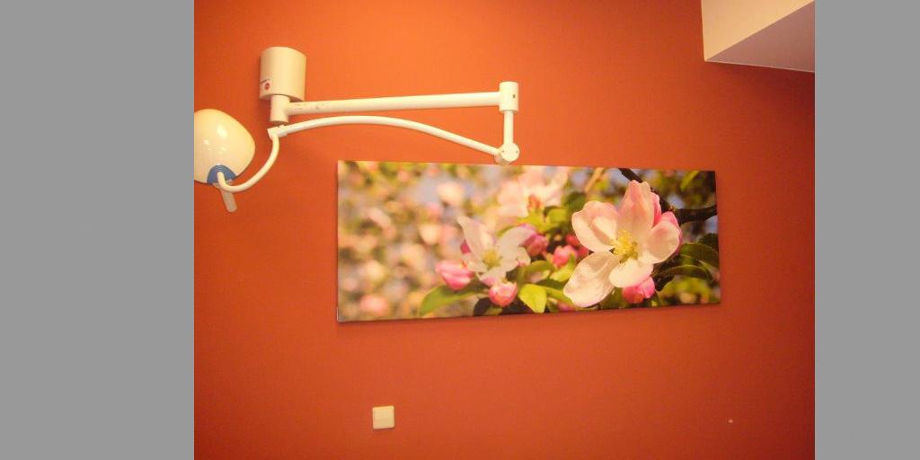 Patintenzimmer mit Fotodruck für Flyer Fotodrucke für Kliniken