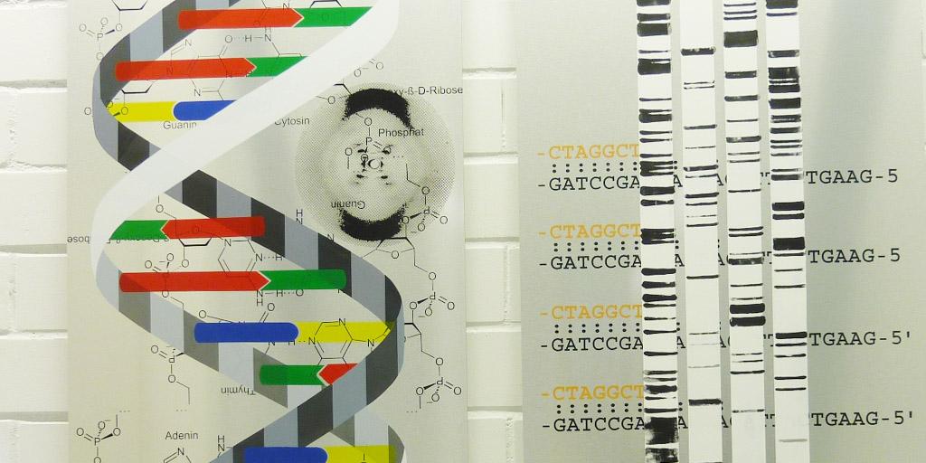 Ausschnitt Doppelhelix aus einem Siebdrcuk von Meike Kohls für MLL GmbH