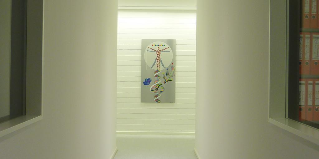 Raumansicht für die MLL GmbH mit einem Werk von Meike Kohls